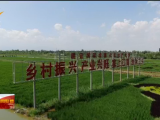 宁夏2021年中国农民丰收节活动9月23日启动-20210920