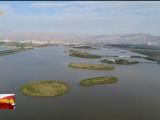 陈润儿在石嘴山市调研督导生态环境保护工作时强调 严肃处理非法排污行为 确保生态环境不受污染-20211008