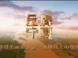 """""""标准""""赋能宁夏现代枸杞产业高质量发展-20211012"""