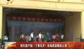 现代眉户剧《丁香花开》在海原县精彩上演-180730