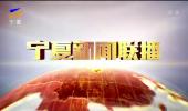 宁夏新闻联播(卫视)-190129