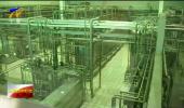 消费者代表走进企业 感受视频生产过程-190624
