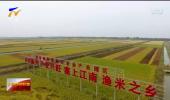 银川:精品农产品组合发力拓市场-191114