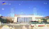 宁夏代表团审议全国人大常委会工作报告 陈竺出席并发言 陈润儿咸辉等发言-200526