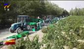 宁夏葡萄酒产业获国家重点研发计划重点专项支持-200508