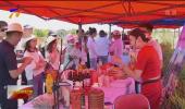 第五届全国知名蔬菜销售商走进宁夏活动在红寺堡区举行-20200806