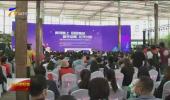 第五届中国西部花卉产业发展大会在银川举办-20200923
