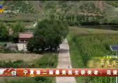 宁夏第二届最美医生获奖者:范俊杰-190821