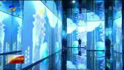 新春走基层丨银川:梦幻的科技 浓浓的年味-20210216