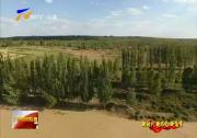 (新时代 新作为 新篇章)盐池:从沙蚀草原到绿树成荫-2018年6月17日
