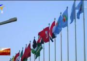 关注第四届中国-阿拉伯国家博览会| 投资和产能合作及国际物流活动亮点纷呈-190803