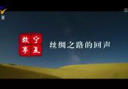 宁夏故事:丝绸之路的回声-190902