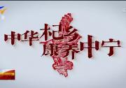 晒文旅·晒优品·促消费|炫彩60秒:中华杞乡 康养中宁-20201126