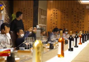 祖国颂·共赏好风景 宁夏葡萄酒产业文旅融合展魅力-20211003