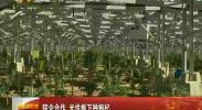 宁夏农科院与宝丰集团联手打造枸杞光伏产业发展新模式-2017年8月4日