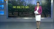 作风建设:果园遭污染 果农权益谁来保障?-2017年8月9日