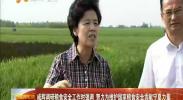 咸辉调研粮食安全工作时强调 努力为维护国家粮食安全贡献宁夏力量-2017年8月11日