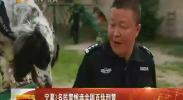 宁夏3名民警候选全国百佳刑警-2017年8月24日