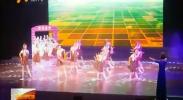 宁夏7个节目参加第九届全国残疾人艺术汇演-2017年8月20日