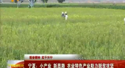 宁夏:小产业 新思路 农业特色产业助力脱贫攻坚-2017年8月12日