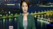 花博会主展区:精心梳妆待游人-2017年8月11日