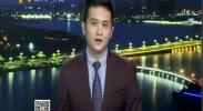 记者带您逛花博 游一园览全国-2017年9月9日
