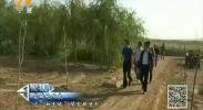 创富宁夏--2017年10月30日