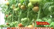 土地承包权再延长30年 农民种田更踏实-2017年10月24日