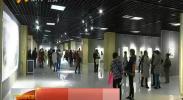 重阳节宁夏老艺术家国画作品联展开展