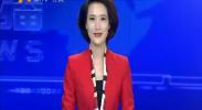 (喜迎十九大 寻找秋天的色彩)姚磨村:又到蔬菜丰收时-2017年10月4日