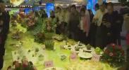 吴忠市第二届特色美食创意大赛开赛-2017年11月18日