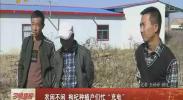 """农闲不闲 枸杞种植户们忙""""充电""""-2017年11月12日"""