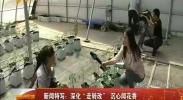 """新闻特定:深化""""走转改"""" 沉心闻花香-2017年11月8日"""