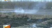 蓝天保卫攻坚战 关注秸秆禁烧-11月24日