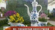 银川:打造农业嘉年华品牌 促进农村三产融合发展-2017年11月7日