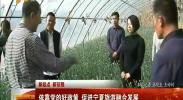 (新起点 新征程)依靠党的好政策 促进宁夏旅游融合发展-2017年11月3日
