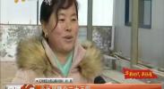 """冬闲不闲 红寺堡农民忙""""充电""""-2017年12月6日"""