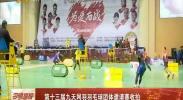第十三届九天网羽羽毛球团体邀请赛收拍-2017年12月25日