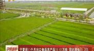 宁夏前11个月出口食品农产品18.61万吨 同比增长15.26%-2017年12月31日
