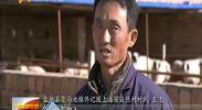 (新时代 新气象 新作为)宁夏:金融加产业 脱贫有动力-2017年12月24日