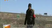 宁夏:7500名生态护林员实现就业脱贫-2017年12月13日