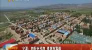 宁夏:四好农村路 铺就致富道-2017年12月27日