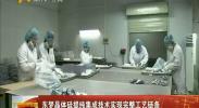 东梦晶体硅提纯集成技术实现完整工艺链条-2017年12月29日