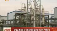 石嘴山惠农区向多家环境违法企业下达停产整治令-2017年12月30日