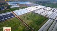 石嘴山 固原国家级农业科技园区通过国家科技部验收-2017年12月6日