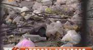 垃圾堆在房顶上 这样的问题谁来管-2018年1月1日