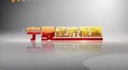 宁夏经济报道-2018年1月2日