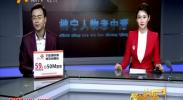 田谨瑞:打造星级标准化党支部-2018年2月21日