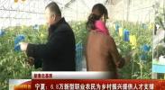 新春走基层 宁夏:6.8万新型职业农民为乡村振兴提供人才支撑-2018年2月2日