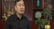 闫新华:为宁夏物流找支点-2018年2月8日